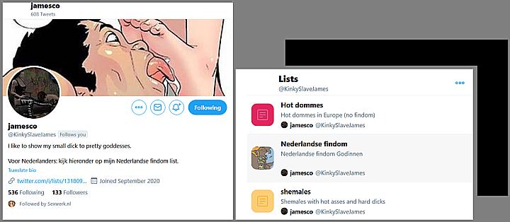 Printscreens van profiel jamesco ihkv Twitterpromotie